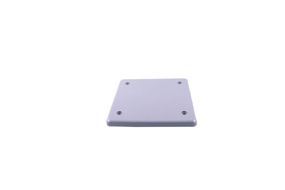 BRCU20-2 PVC DBL GANG COV. PLATE BLANK W/ GSKT SCEPTER